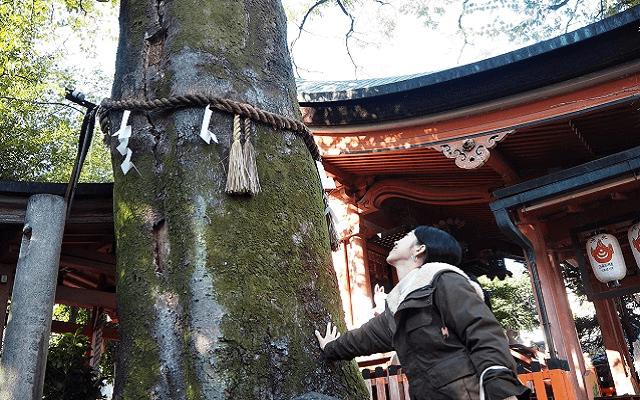 『武信稲荷神社』